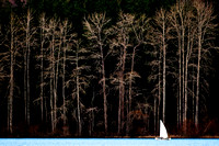 Elk Lake Sailboat